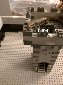 Lizard_on_Lego_tower