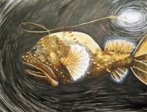 humpbackanglerfish