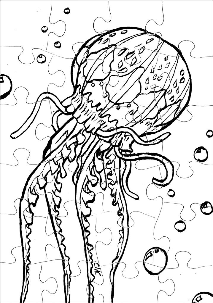 JellyfishPuzzle