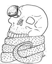 23_SnakenSkull