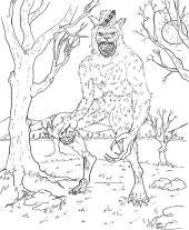 28_Werewolf-LoupGarou